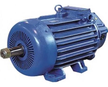 Электродвигатель  MTH 511-6 37 кВт. 955 об/мин производитель Сибэлектромотор